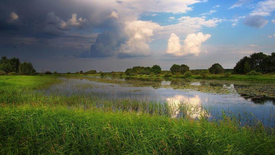 Погода в Саратовской области на сегодня - среда 03 августа 2021 года