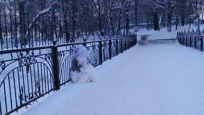 ВКирове увидели необычную невесту