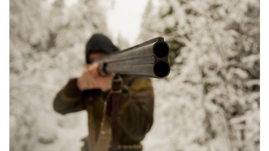 ВНагорске осудили охотника, который застрелил знакомого из-за собаки