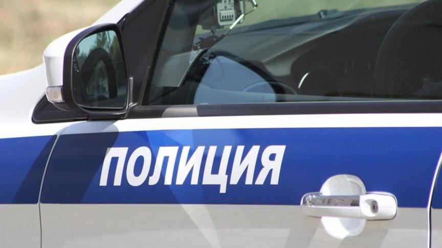 Новосибирский ребенок избил женщину-полицейского
