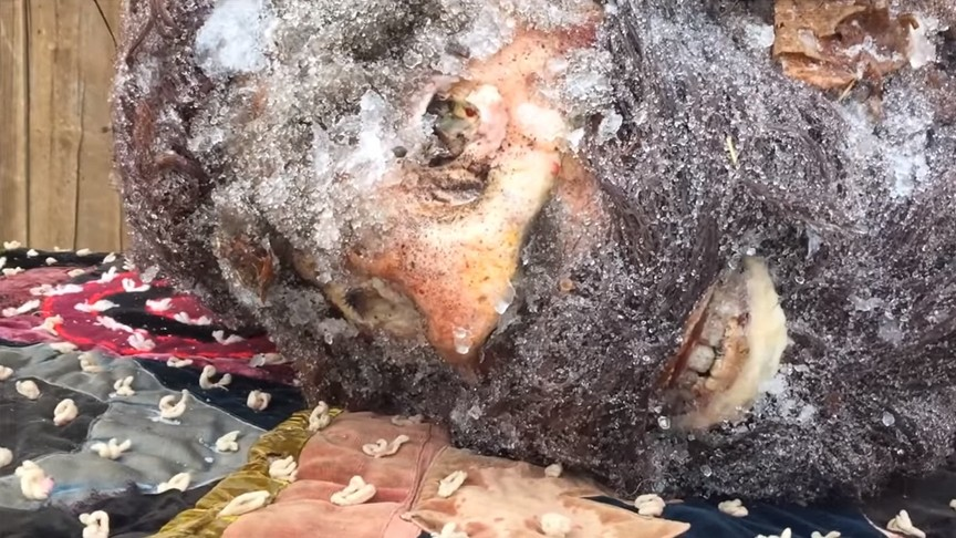 Уфолог продемонстрировал голову снежного человека через 65 лет хранения