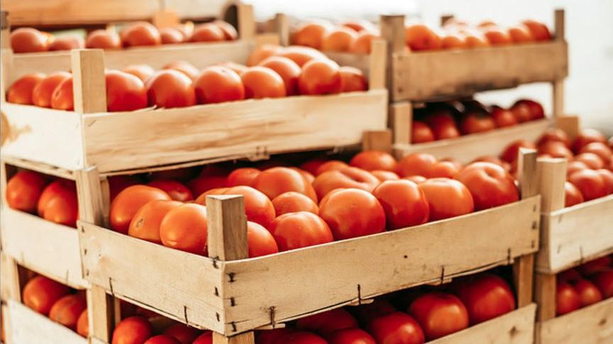 Стурецких томатов снимут все ограничения, однако  квоты сохранят неизменными